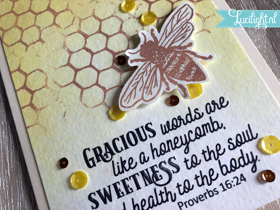graciouswords lucilight 2