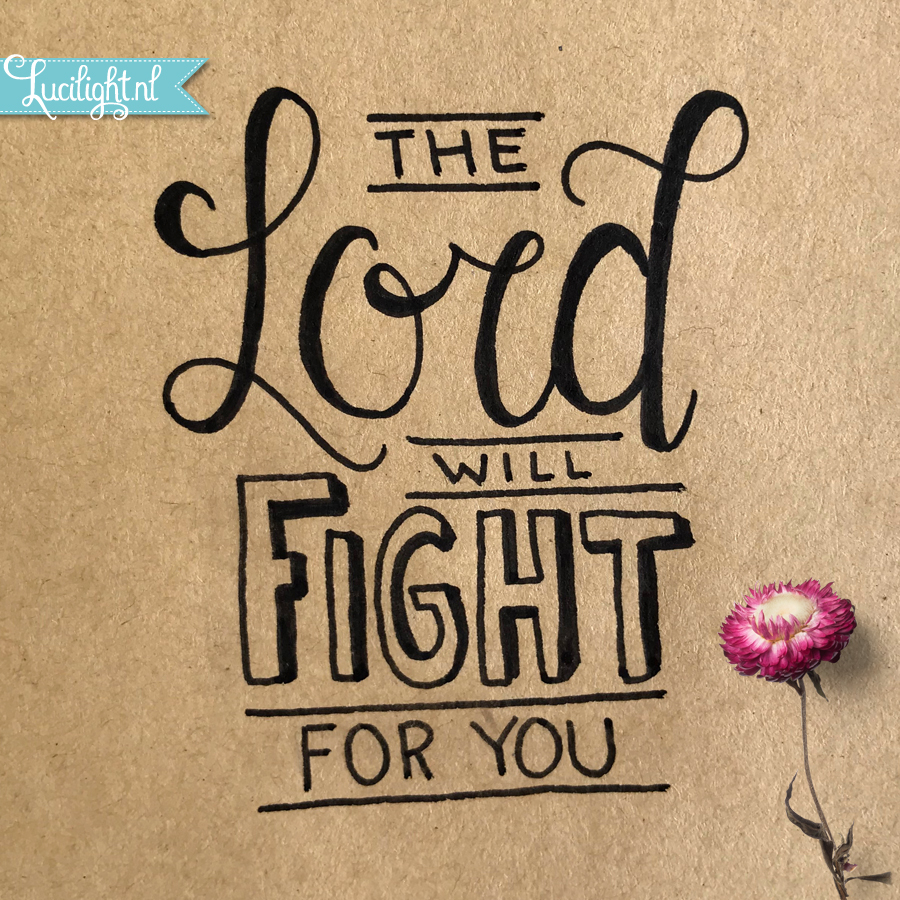 lord will fight lucilight